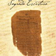 O-Sacerdocio-na-Sag-Escritura